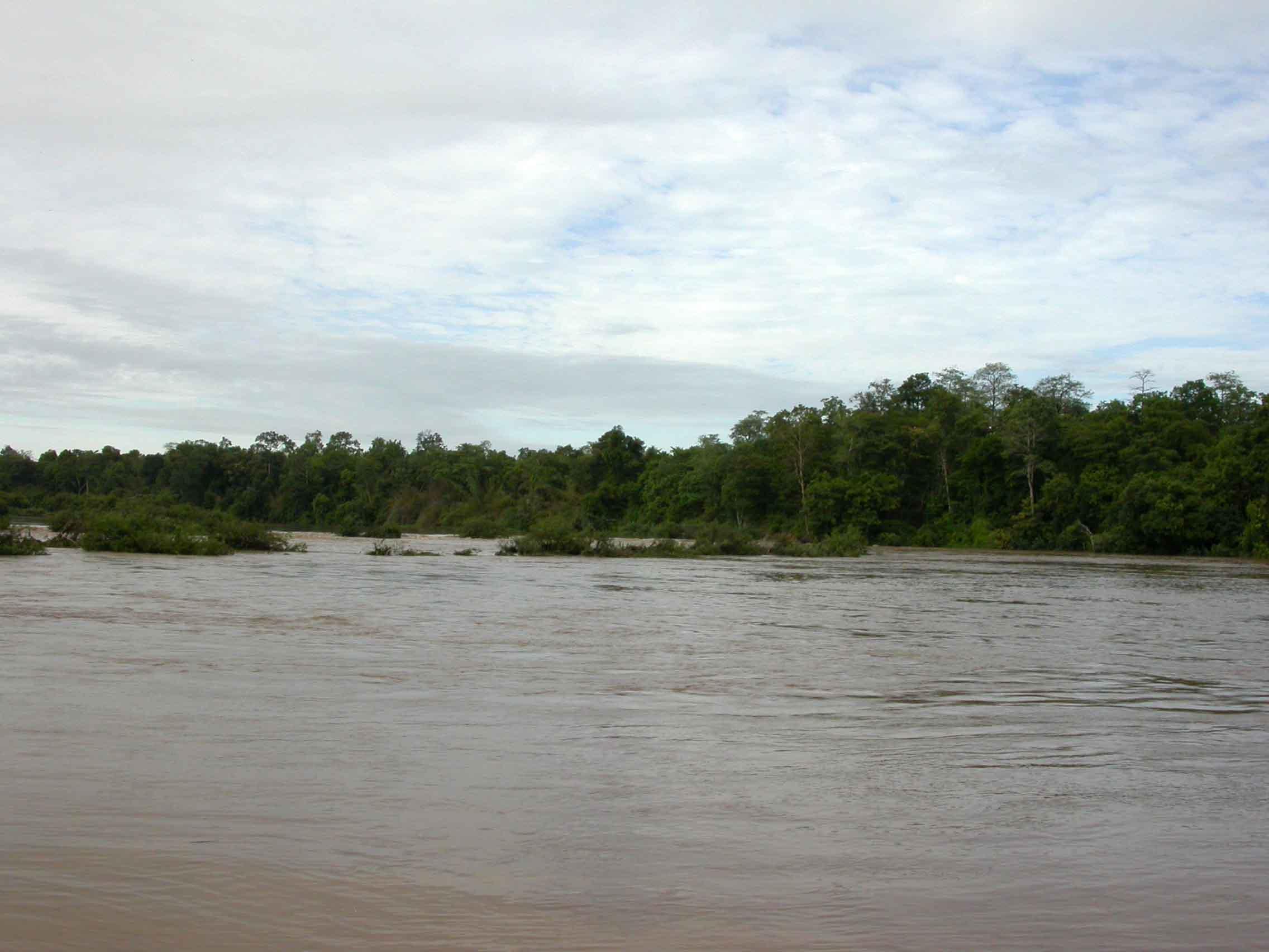 bird-habitats-and-communities-in-vietnam