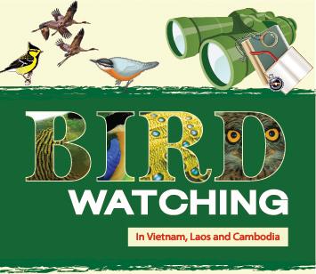 birdwatchingvietnam.net