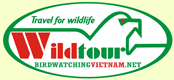 Wildtour Co.,Ltd